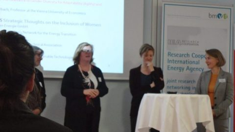 Women in Energy: Learning from International Initiatives and Austrian Best Practices