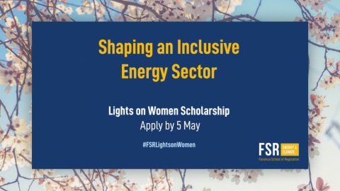 1st FSR Lights on Women Scholarship