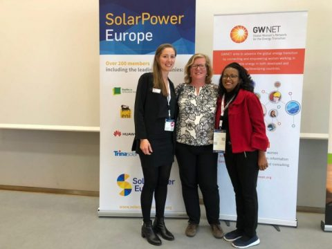 Networks proving powerful in supporting gender inclusive energy transition