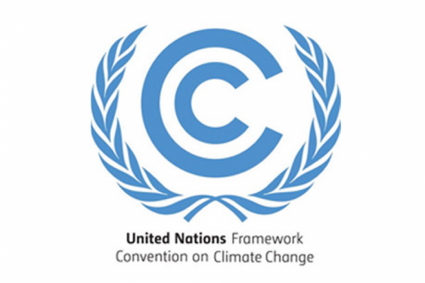 Women in Wind Statement to UNFCCC Adaptation Committee on Gender Mainstreaming