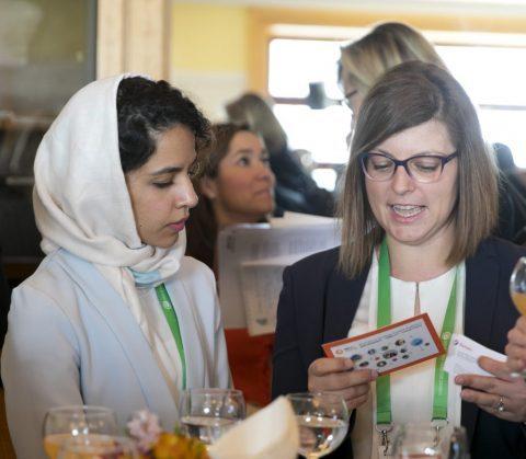 Women in Energy Expert Platform: FAQs