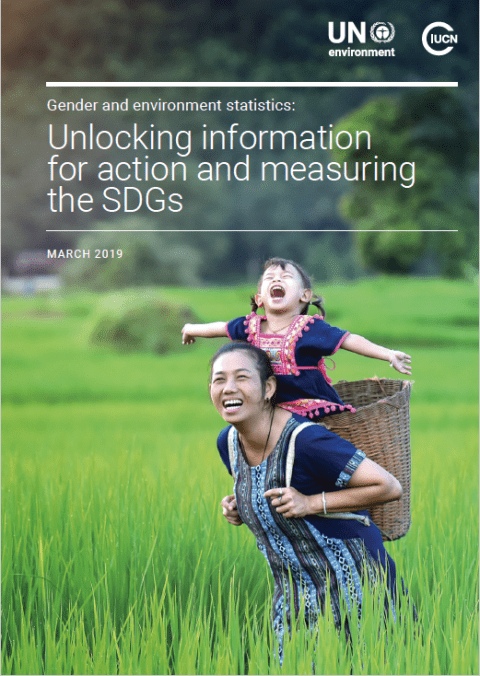 Gender and Environment Statistics: Unlocking Information for Action and Measuring the SDGs