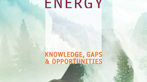 Women in Clean Energy: Knowledge, Gaps & Opportunities