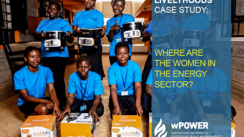 LivelyHoods Case Study: Where Are the Women in the Energy Sector?