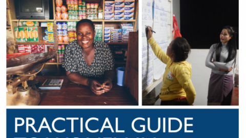 Practical Guide to Women in Energy Regulation