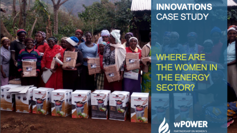 Wisdom Innovations Case Study: Where Are The Women In The Energy Sector?