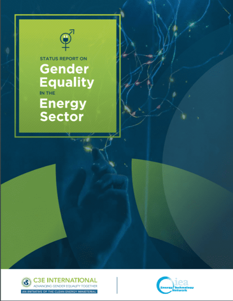 Status Report on Gender Equality in the Energy Sector