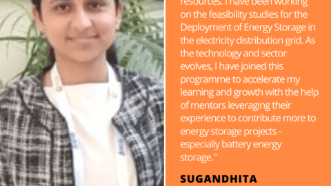 Sugundhita Wadhera Energy Storage Quote