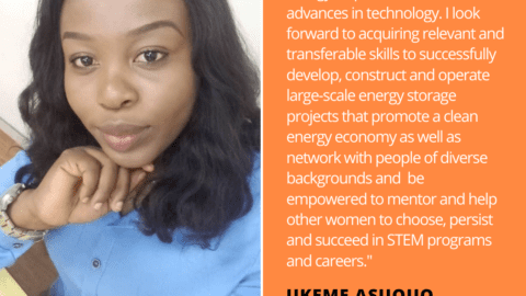 Ukeme Asuquo Energy Storage Quote