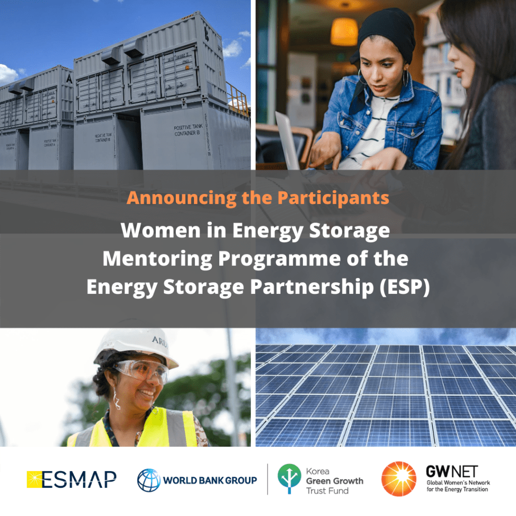 Participants of the Women in Energy Storage Mentoring Programme