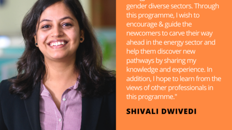 Shivali Dwivedi Energy Storage Quote