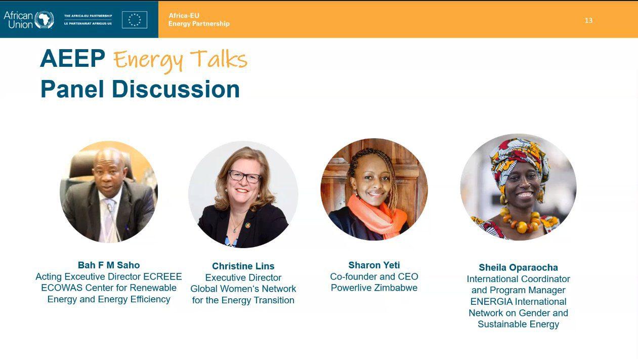 AEEP Energy Talks Panel